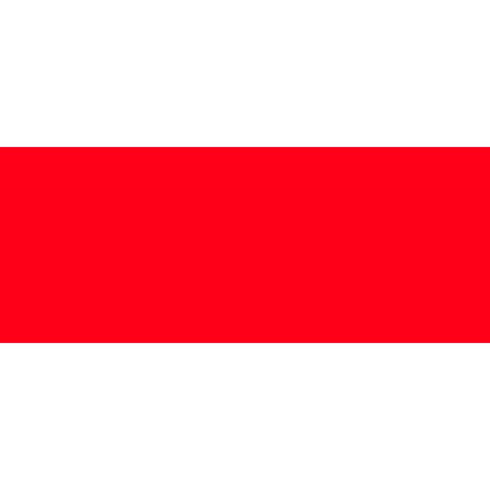 Placa-Rojo-Liso-20x50-Cm.
