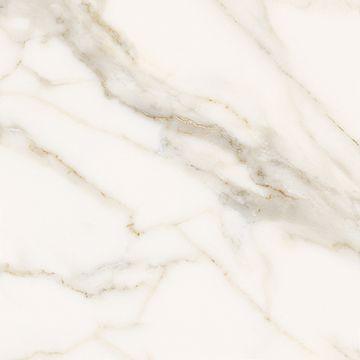 Porcellanato-62x62-Calacata