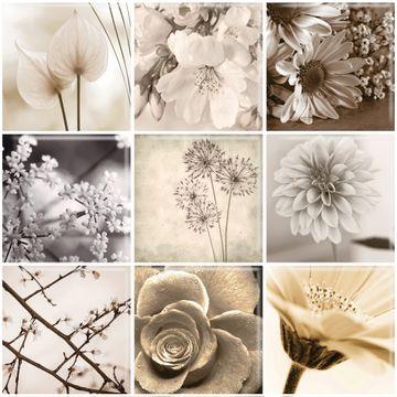 Mosaico-Black-Flower-30x30-Cm