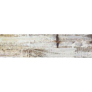 Porcellanato-Legni-Olden